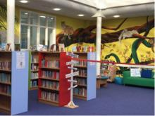 Interior of the library with colourful shelves